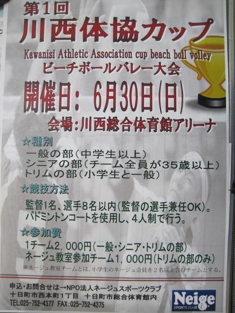 第1回 川西体協カップ ビーチボールバレー大会