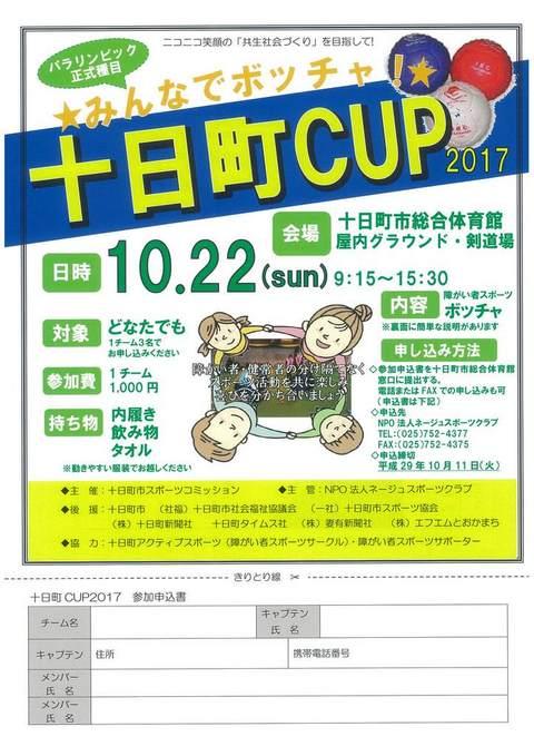 みんなでボッチャ「十日町CUP2017」を開催します!